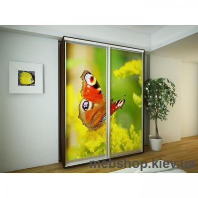 Шкаф-купе Эконом №20 (двери фотопечать)