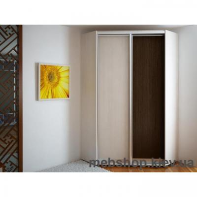 Кутовий Шафа-Купе Економ №31 (Двері Дсп)