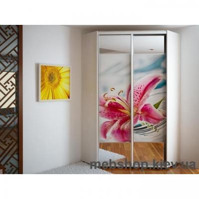 Купить Угловой Шкаф-купе Эконом №32(двери фотопечать вставки зеркало). Фото
