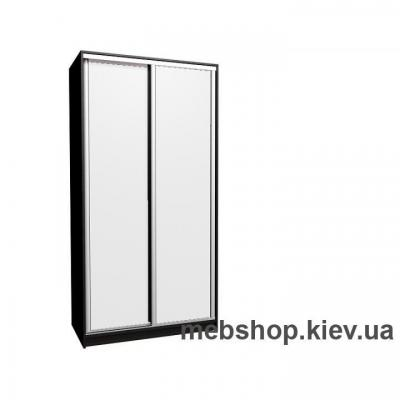 Шкаф-купе Эконом 1000(глубина 450)