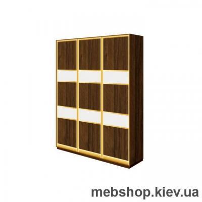 Шкаф-купе Дом В-214