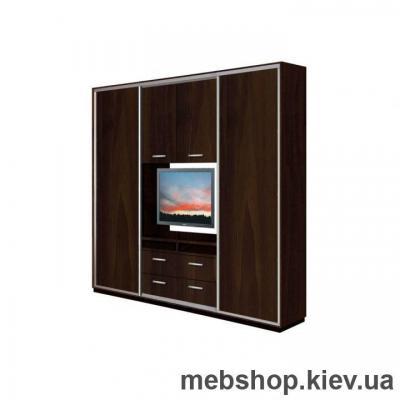 Шкаф-купе Дом К-25