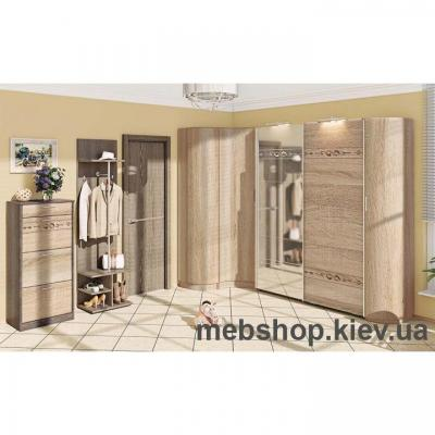 Прихожая «ЕВРОПЕЙСКАЯ» ВТ-3902 (2,32 *2,97м)