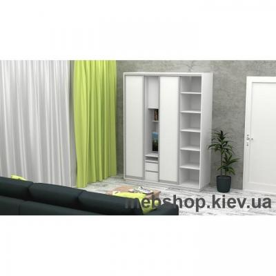 Шкаф-купе FLASHNIKA Слайд 1 (двери ДСП)