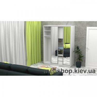 Шкаф-купе FLASHNIKA Слайд 1 (двери зеркало)