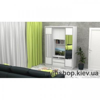 Шкаф-купе FLASHNIKA Слайд 1 (двери ДСП комби зеркало)