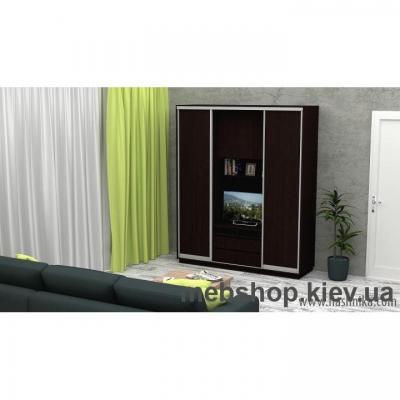 Шкаф-купе FLASHNIKA Слайд 2 (двери ДСП)