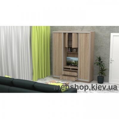 Шкаф-купе FLASHNIKA Слайд 3 (двери ДСП)