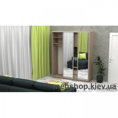 Шкаф-купе FLASHNIKA Слайд 3 (двери зеркало)