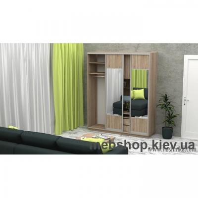 Шкаф-купе FLASHNIKA Слайд 3 (двери ДСП комби зеркало)