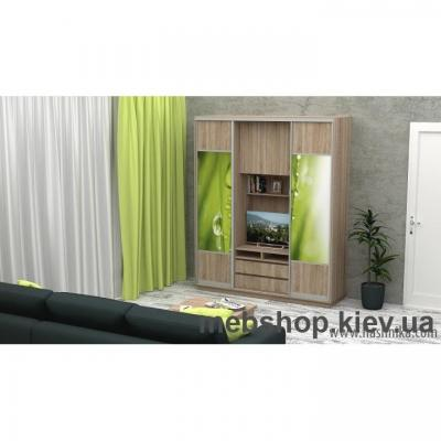 Шкаф-купе FLASHNIKA Слайд 4 (двери ДСП комби фотопечать)