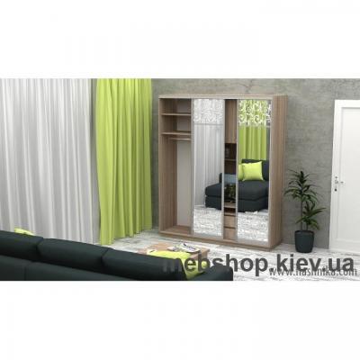 Шкаф-купе FLASHNIKA Слайд 4 (двери зеркало комби зеркало с пескоструем)