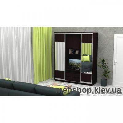 Купить Шкаф-купе FLASHNIKA Слайд 9 (двери ДСП комби зеркало). Фото