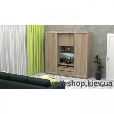 Купить Шкаф-купе FLASHNIKA Слайд 10 (двери ДСП). Фото