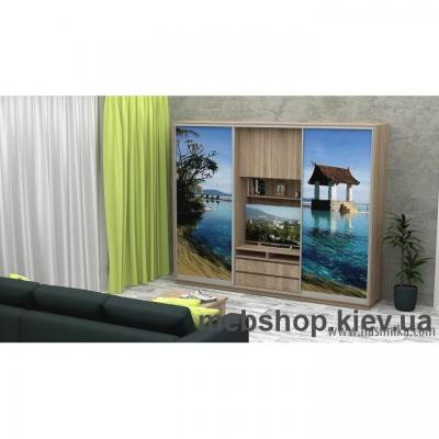 Купить Шкаф-купе FLASHNIKA Слайд 11 (двери фотопечать). Фото