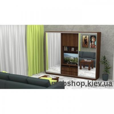 Купить Шкаф-купе FLASHNIKA Слайд 13 (двери зеркало). Фото