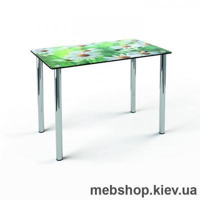 Обідній стіл скляний ESCADO S1 нанесення малюнку, візерунку, фотодруку або заливка кольором