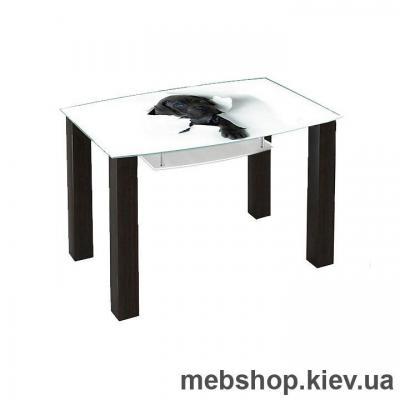 Купить Обеденный стол стеклянный ESCADO SW12 верх нанесение рисунка, узора, фотопечати или заливка цветом; низ матовый. Фото
