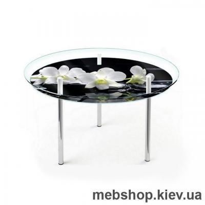 Купить Обеденный стол стеклянный ESCADO R2 верх прозрачный; низ нанесение рисунка, узора, фотопечати или заливка цветом. Фото