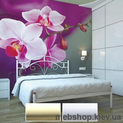 Купить Кровать металлическая Диана цвет бежевый; белый бархат (Металл-Дизайн). Фото